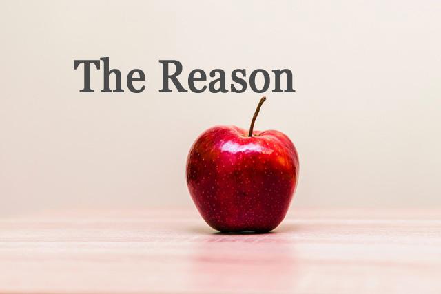 ネットビジネスが「稼げない」たった1つの理由と「稼げる」2つの理由。
